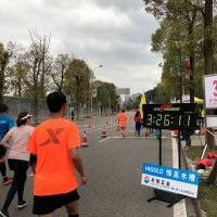 人生初マラソンが 重慶国際マラソン 2017.3.19