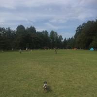 ディアナの大好きな公園へ
