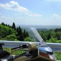 弥高山にツツジを見に行ってきました。