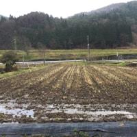 ◇12月発送◇特別栽培米◇