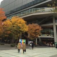 1年の総決算!東京旅行 その5(11/23)