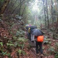 ⑥ 松笠山~二ヶ城山縦走登山 : 難儀な雨の急登  UP2日目