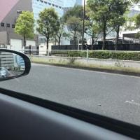 楽しい運転練習         フジドライビングスクール東京