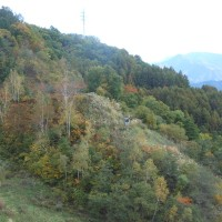木祖村の味噌川ダム・・・秋を探しに・・・良く晴れた26日に・・・
