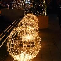36st Sapporo White Illumination 『クリスマスガーデンカフェ』