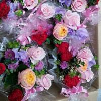 4月27日 明日の誕生花・ゆかりの花 花言葉は?(*^O^*)☆