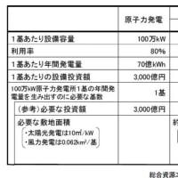 太陽光発電、インドでは100MWが標準?