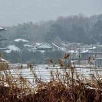 雪の法起寺