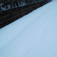 見わたすかぎり~雪・❆・❅・☃