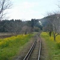 濃溝の滝&いすみ鉄道