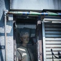 【May_27】吉祥寺通りのマネキン