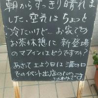 マフィン登場