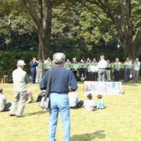 森の音楽祭で山野草を展示