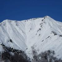 雪国の1月には珍しい快晴の日、我が家の22歳のネコが大往生