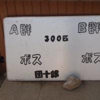 小豆島ショートトリップ⑤☆