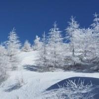 ちょいと白銀の世界へ・樹氷の王ヶ頭