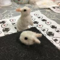 10月の羊毛教室☆土曜日クラス