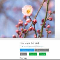 ccライセンスの写真を検索