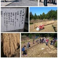 越畑フレンドパークまつばら @ 招徳酒造 酒米「祝」収穫祭