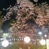 3月14日は伸さんの誕生日