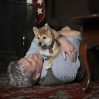 「HACHI 約束の犬」