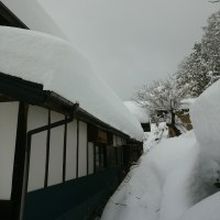 すごい雪です
