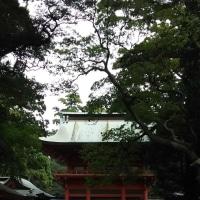 久しぶりの鹿島神宮で、お蕎麦を頂いてきました(^^