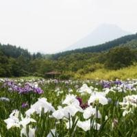 神楽女湖 2
