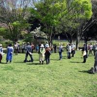 2017年4月16日 見沼自然公園 食べられる野草を見つけよう