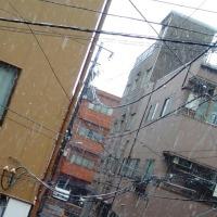 11月に雪!