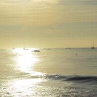 朝の光の海辺から