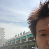 アフリカン計画in歌舞伎町