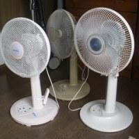 酷暑から一転早や冬支度?