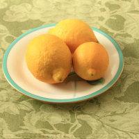 レモンと生姜の蜂蜜漬け