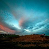 ネモフィラの丘ライトアップ 16229