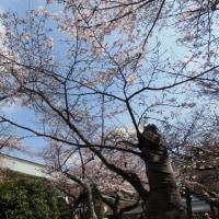 スポコミ・カワラ版 4月27日(木)先勝