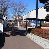 府中市郷土博物館の梅園