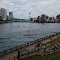 今日の隅田川(曇り☁)