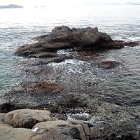 芋子島 最北部