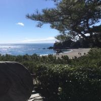 海がギラギラ高知龍馬マラソン応援