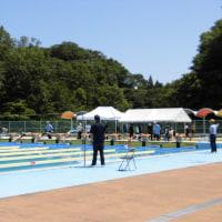 天気は絶好の水泳日和?!