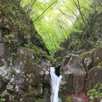 170514霧の赤城神社・旭の滝