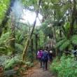 ニュージーランド瞑想旅行