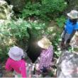 黒岳原生林から風穴2