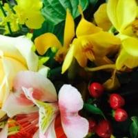 アトリエのお花達