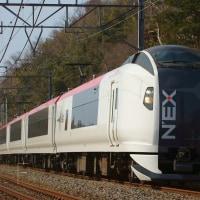 2017年2月20日  総武線  物井  E259系 Ne019編成  成田エクスプレス19号