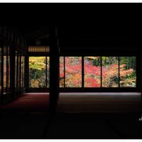京都 2016 秋 13