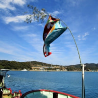 漁師の元気祭り