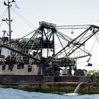 ソマリアが違法操業船から罰金を確保