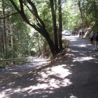 京都・勾配の急な「六丁峠」は京都府道50号線